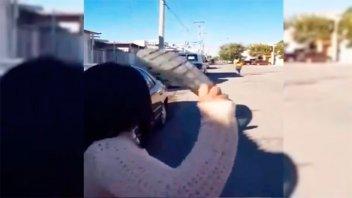 Video: La puntería de una madre que le arroja un