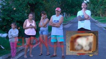 Preocupa a vecinos un Pitbull que mató a dos perros