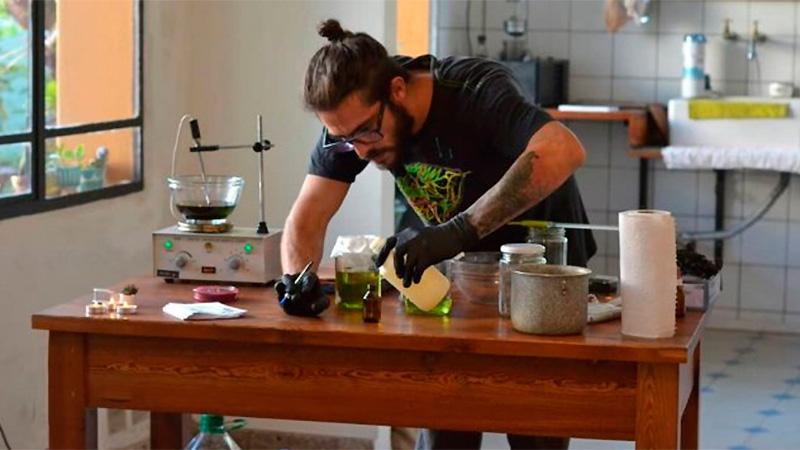 Procesado por tener 33 plantas de marihuana y dar talleres públicos sobre su uso