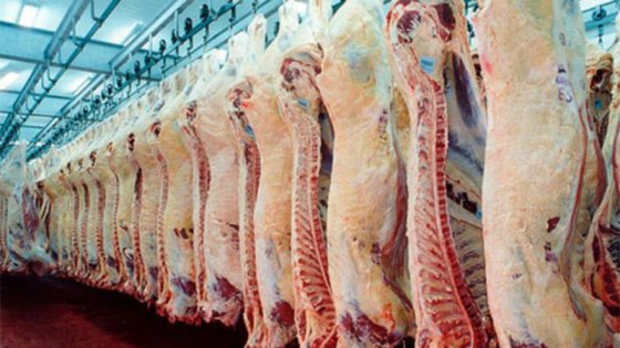 Entre Ríos busca ampliar su mercado en Rusia con carnes y lácteos