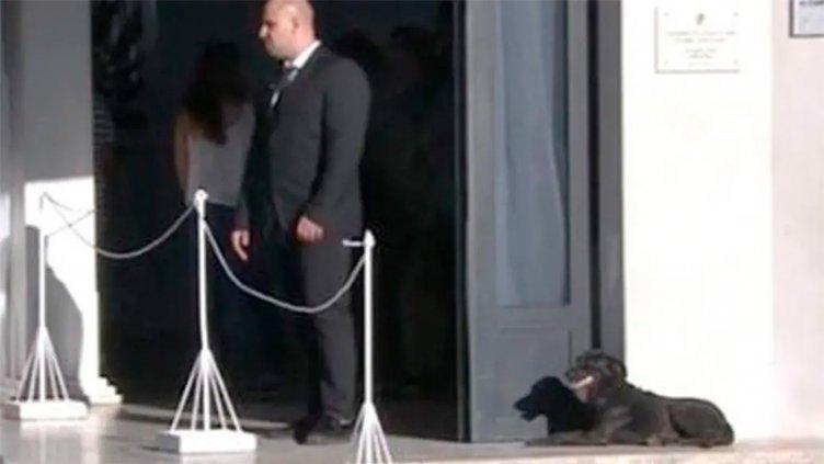 Nala, la perra de Emiliano Sala, estuvo durante horas en el velatorio