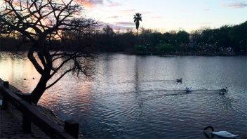 La autopsia confirmó la causa de muerte de la mujer hallada en una laguna