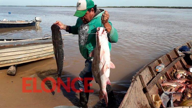 Afirman que creció el consumo de pescado: Los precios para Semana Santa