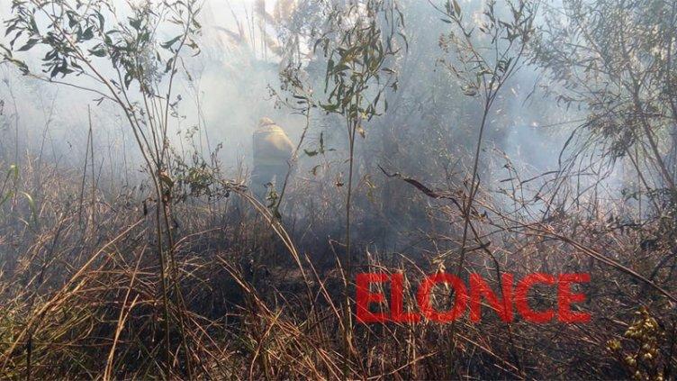Bomberos Voluntarios sofocaron un incendio de pastizales en el sur de la ciudad