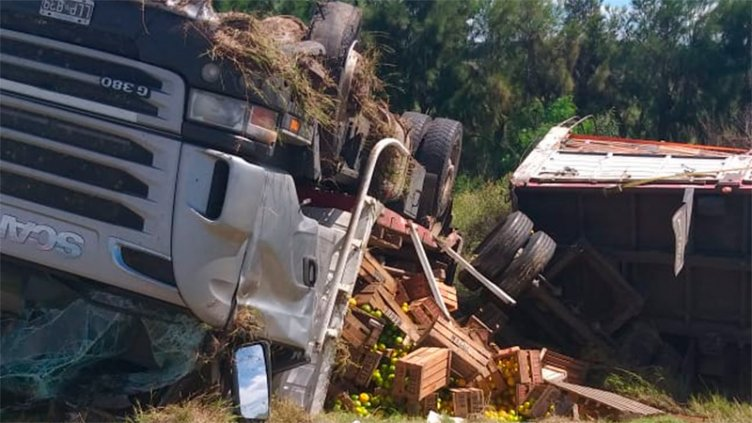 Camión cargado con cítricos volcó en la Autovía 14 tras reventar un neumático