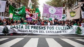 Miles de personas de movilizaron para pedir la despenalización de la marihuana