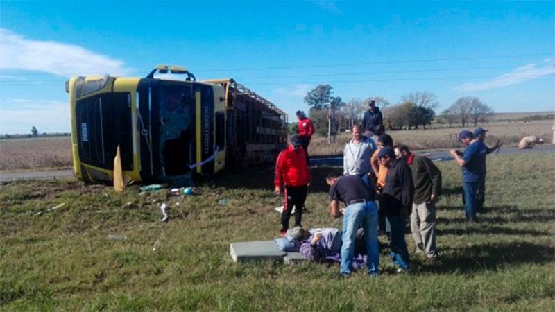 Camión que trasladaba cerdos cruzó de carril y volcó en la autovía