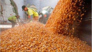 AFIP confiscó casi 5000 toneladas de granos en cuatro provincias