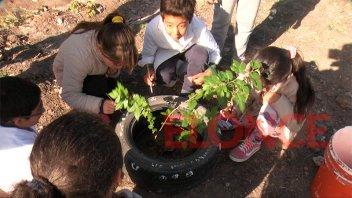 Alumnos de la escuela Los Constituyentes plantaron árboles
