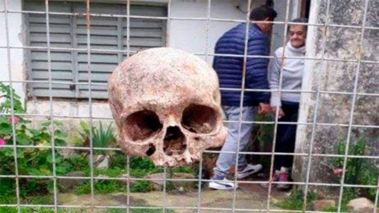 Hallaron cráneo humano colgando en una reja: Investigan amenazas a una familia