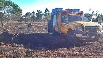 Incendio forestal destruyó tres hectáreas en Concordia
