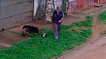 Video: Denunciaron a un vecino de Gualeguay por maltrato animal