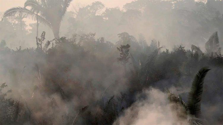 Fuego en Amazonas: El humo llegó al norte del país y alcanzaría a Buenos Aires