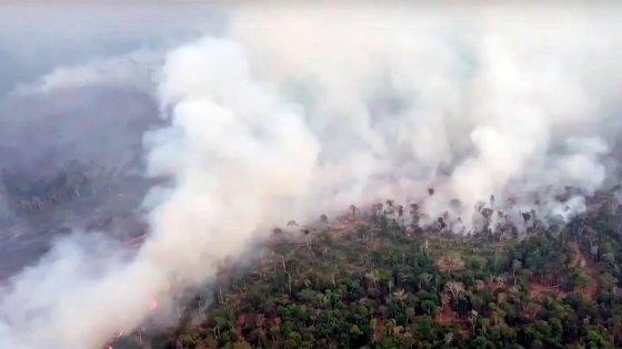 Incendios arrasan el Amazonas: Videos muestran enormes columnas de humo