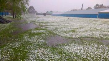 Fotos: Fuerte granizada con lluvias y viento castigó a una zona de Entre Ríos