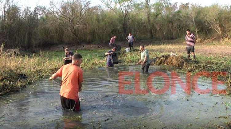 Rescate de peces atrapados en las cavas: se sumó a la tarea Amigos del Puerto