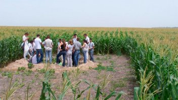 Implementan plan de acción para promover desarrollo de bioinsumos agropecuarios