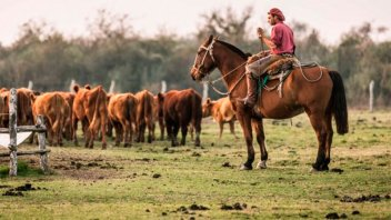 Los trabajadores rurales acordaron un bono de $ 5000: se pagará en tres cuotas