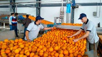 Cooperativistas inauguraron una nueva fábrica de jugos en región de Salto Grande