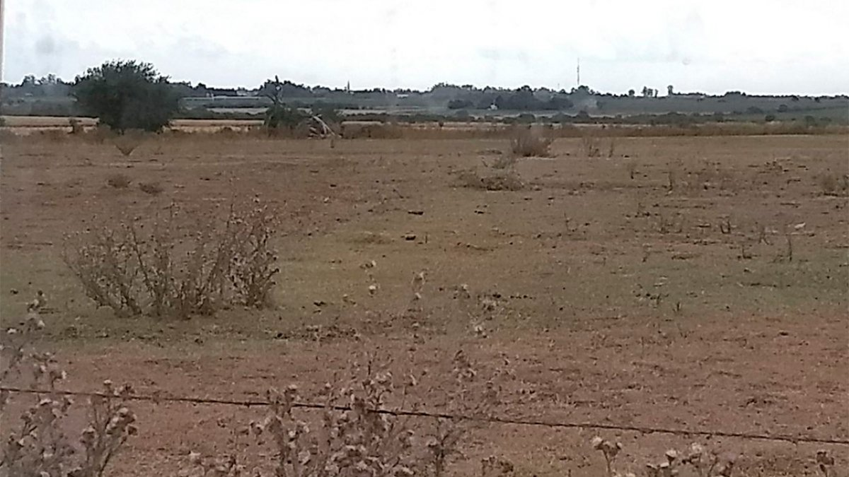 Zona rural de Viale.